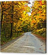 Follow The Yellow Leafed Road Painted Canvas Print