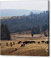 Foothills Of West Virginia Canvas Print