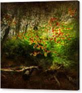 Forbidden Woods Canvas Print