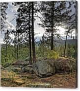 Forest Boulder Formation Near Red Lake Washington Canvas Print