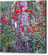 Forest Flowers Bhuping Palace Canvas Print