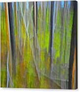 Forest Impression Photographic Image Yellowstone No. 2135. Canvas Print