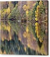 Forest Reflected In A Loch Canvas Print