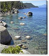Forested Shores Of Lake Tahoe Canvas Print
