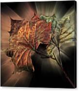 Forever Autumn Canvas Print