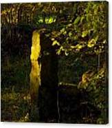 Forgotten Gatepost Canvas Print