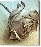 Forgotten Rose Canvas Print