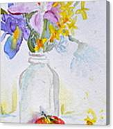 Forsythia And Ghost Daisies Canvas Print