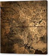 Fossilite Canvas Print