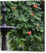Fountain In The Garden Canvas Print