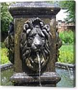 Fountain Lion Canvas Print
