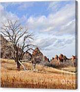 Fountain Valley Canvas Print