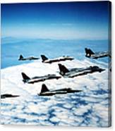 Four F-14 Tomcats And Three F-5 Tiger Canvas Print