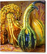 Four Gourds Canvas Print