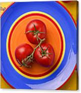 Four Tomatoes  Canvas Print