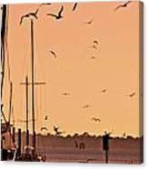 Fowl Sunset Canvas Print