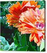 Fractured Gerber Daisies Canvas Print