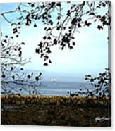 Framed On Penobscot Bay Canvas Print