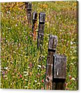 Fredricks Meadow Canvas Print