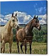 Freedom Riders Canvas Print