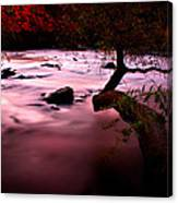French Broad River In Fall Canvas Print
