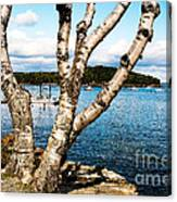 Frenchman Bay Canvas Print