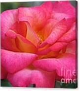 Fresh Floral Canvas Print