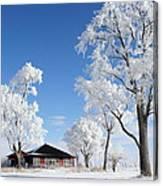 Fresh Frost Canvas Print