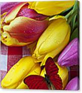Fresh Tulips And Red Butterfly Canvas Print