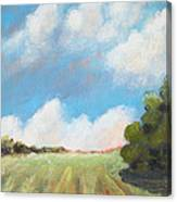Freshly Cut Hay Field Canvas Print