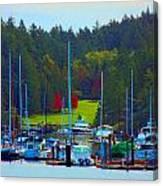Friday Harbor Docks Canvas Print