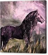 Friesian Proud Canvas Print