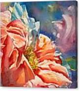 Frizzy Canvas Print