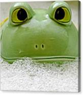 Frog In The Bath  Canvas Print