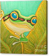 Frog Peeking Out Canvas Print