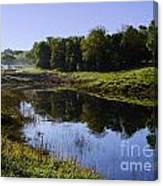 Frog Pond Canvas Print