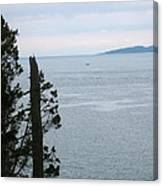 From The Bluff Canvas Print