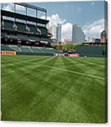 From The Visitors Dugout Canvas Print