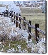 Frosted Fence Canvas Print