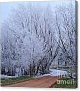 Frosted Path Canvas Print