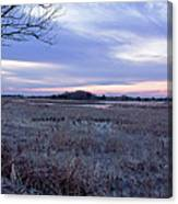 Frosty Cape May Meadow Canvas Print