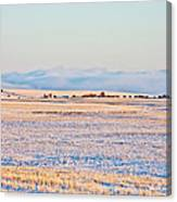 Frosty Morning 2 Canvas Print