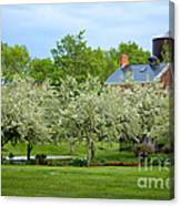 Frothy Foliage Canvas Print
