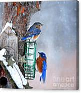 Frozen Blue Plate Special Canvas Print