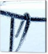 Frozen I Canvas Print