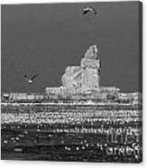 Frozen Lighthouse B W Canvas Print