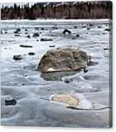 Frozen Waves Canvas Print