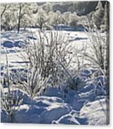 Frozen Winter Landscape Canvas Print