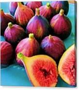Fruit - Jersey Figs - Harvest Canvas Print