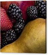 Fruit 2 Canvas Print